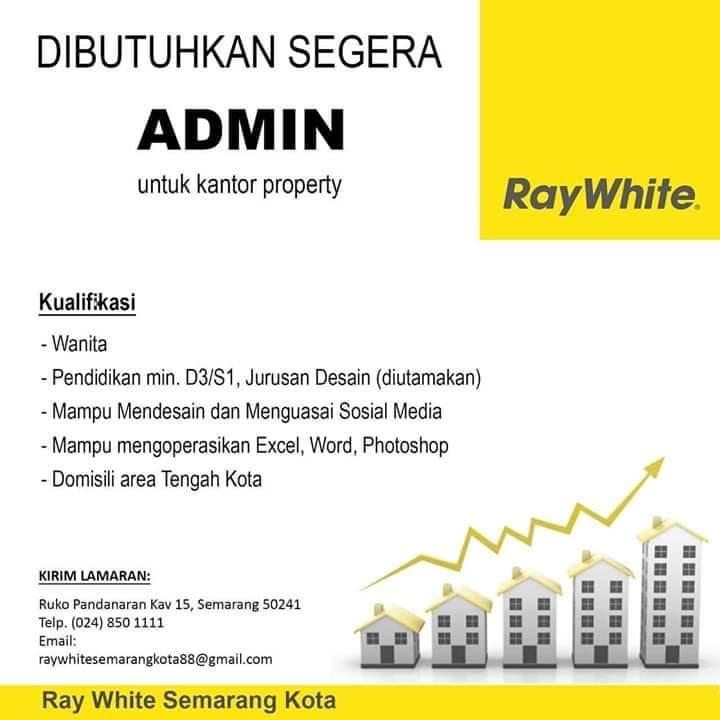 lowongan adm  ray white