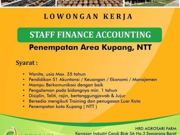 Loker akuntansi staff finance argosari